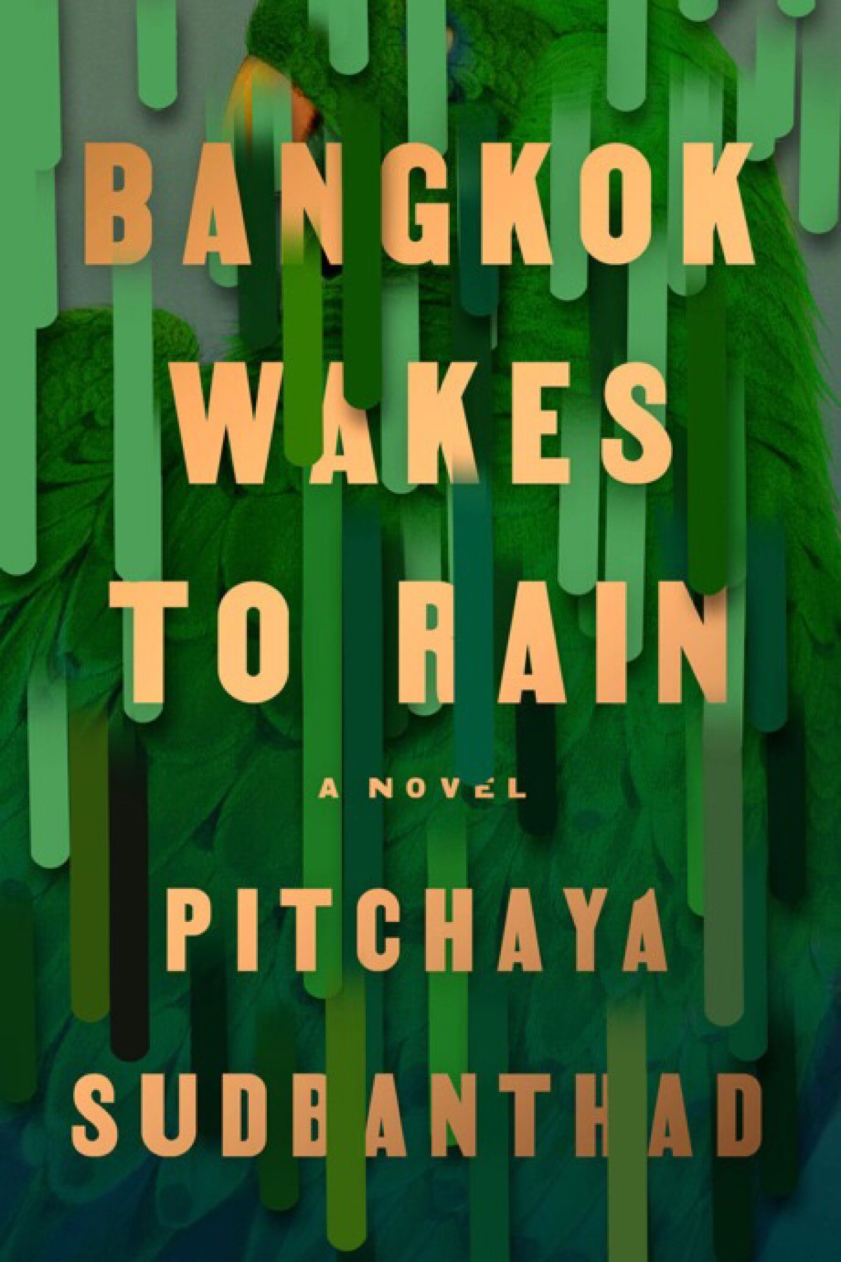 Book cover of Bangkok Wakes To Rain