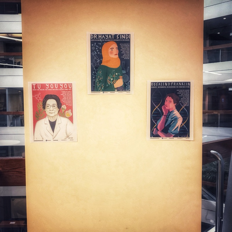 STEM Role Models posters from Nevertheless Podcast
