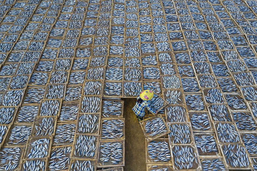 A woman dries trays of fish at Long Hai fish market